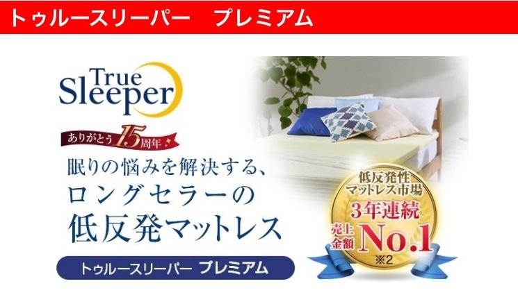 【Webマーケティング分析】トゥルースリーパー(その③)